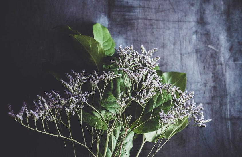 mauve flowers bouquet on dark background