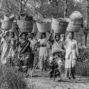 India - daily wage labourers and women